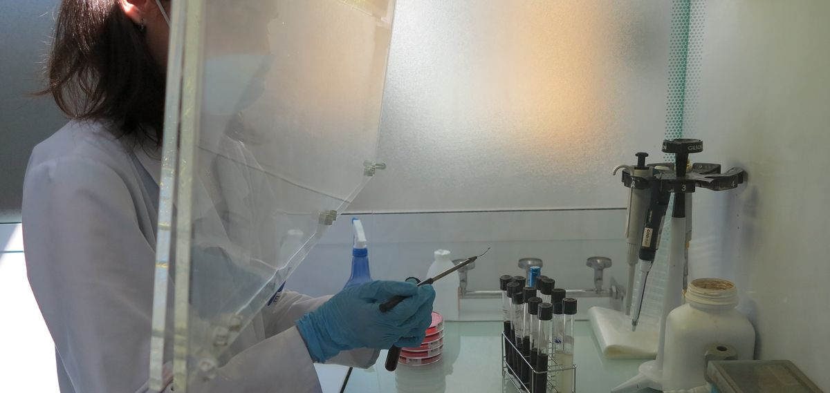 laboratory opening Analytical job