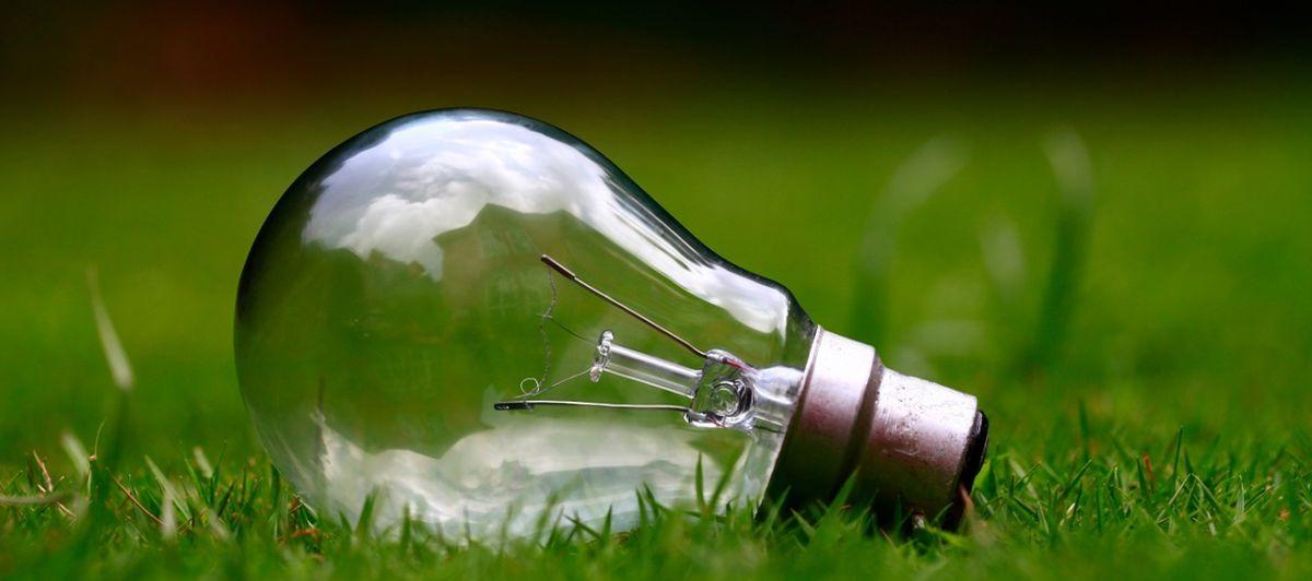 Umweltschutz-Ideen